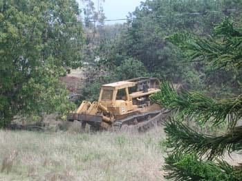 bulldozer3-1