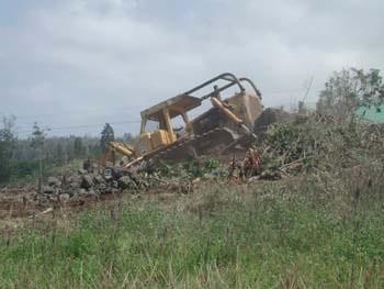 bulldozer4